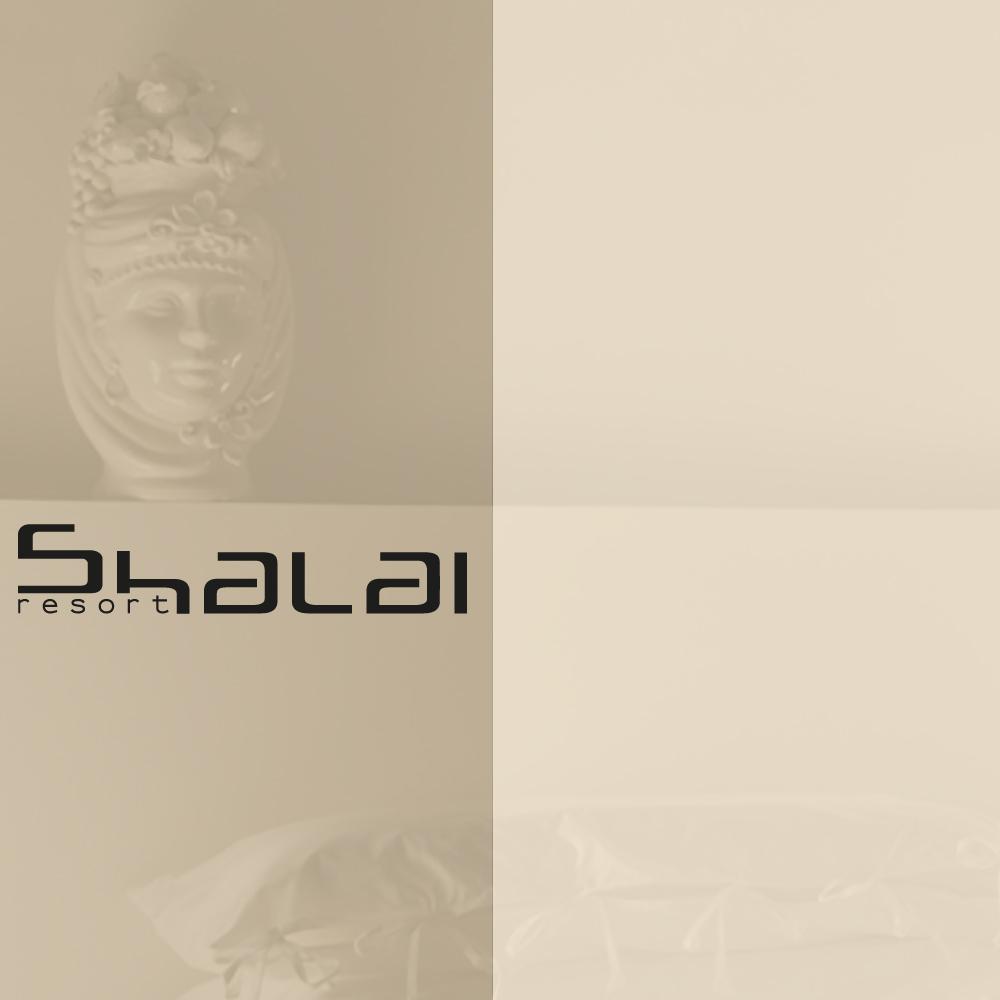 shalai-coper-pressh24